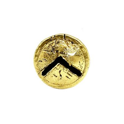 The Shield of Leonidas at the Battle of Thermopylae, handmade solid brass pin with patina